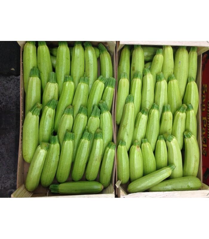 Zucchine bianche 4,5kg