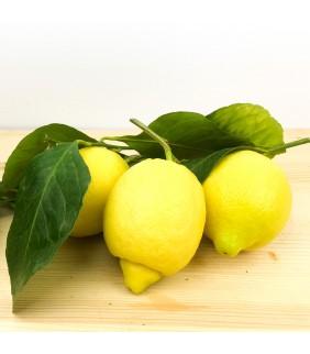 Limoni di Sorrento 5kg