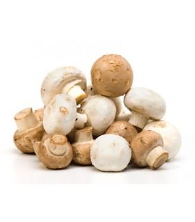 Funghi cremini Champignon 3 Kg