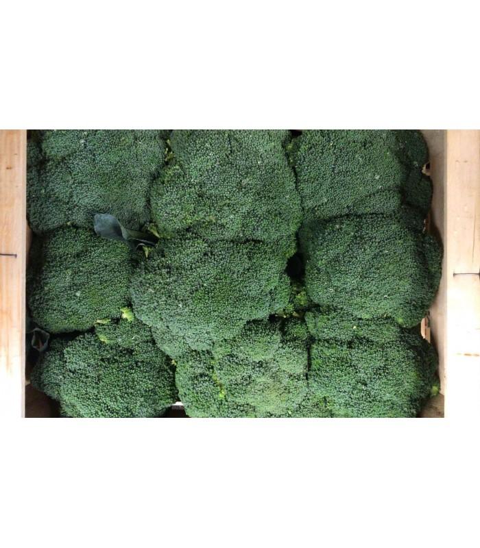 Broccoli Puglia 5 Kg