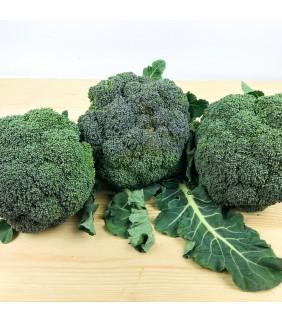 Broccoli Puglia 1Kg