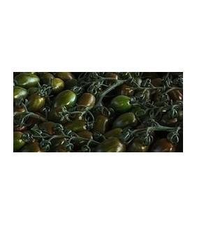 Pomodoro Zebrino mini x 2kg