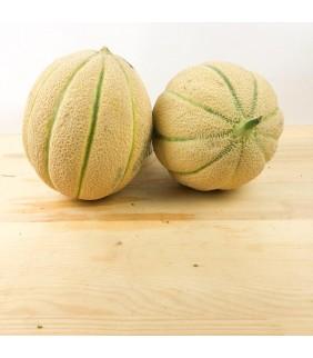 Melone Cantalupo retato 5/6...