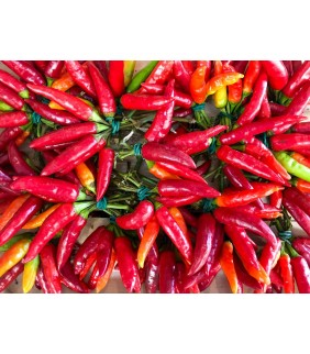 Peperoncino rosso Cayenne...
