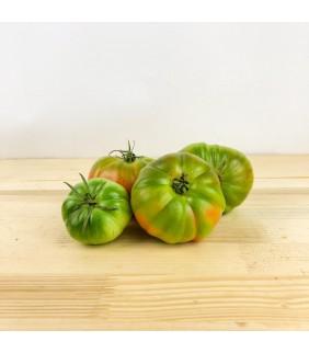 Pomodoro Costoluto ca. 5kg