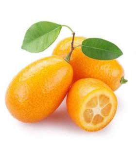 Kumquats - Mandarini cinesi...