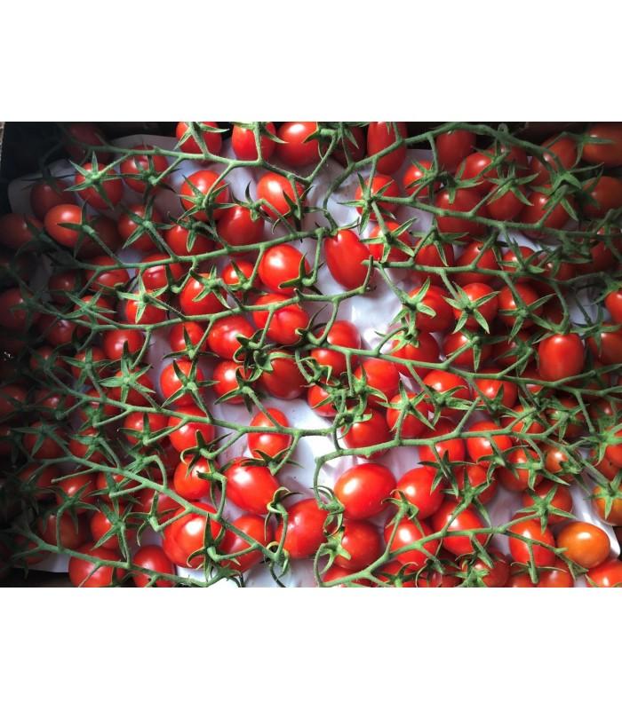Pomodoro Datterino Sicilia 3,5kg