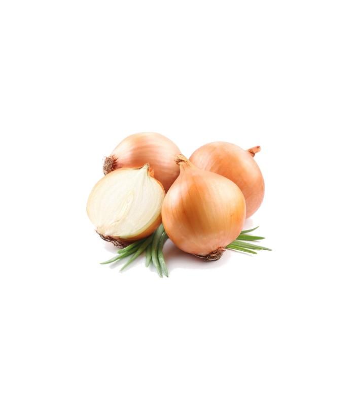 Cipolla Dorata del Fucino 5 Kg