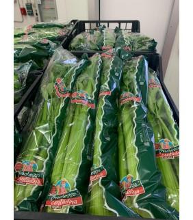 Sedano verde foglia 1kg