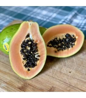 Papaya  Airborne 2 frutti...