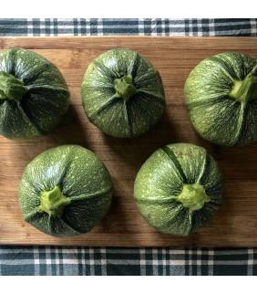 Zucchine Tonde 4kg+