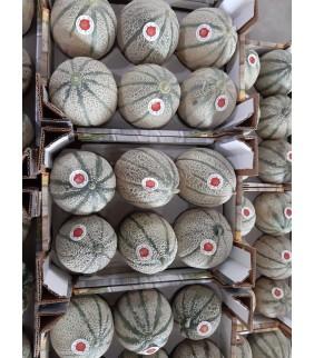 Melone 5-6 frutti 6kg+ Sicilia