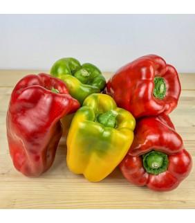 Peperoni rossi e gialli 1 kg