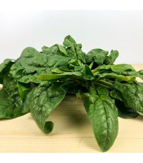 Spinaci in busta 500g