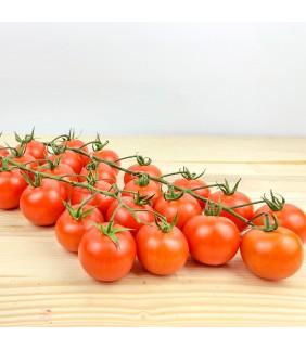Pomodori Ciliegino 3kg
